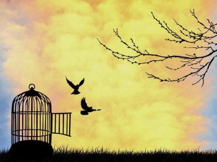 Vivi e liberi… Cento volte tanto