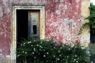 Il Custode dei giardini interiori