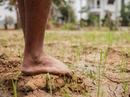 Non manca la terra sotto i piedi… osservala!