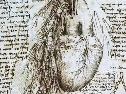 Cosa c'è nel cuore?